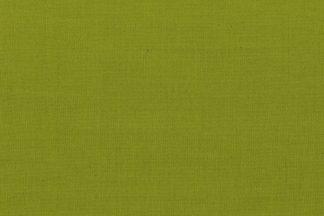 121061 wasabi