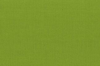 121071 green sheen