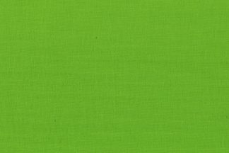 121076 apple green